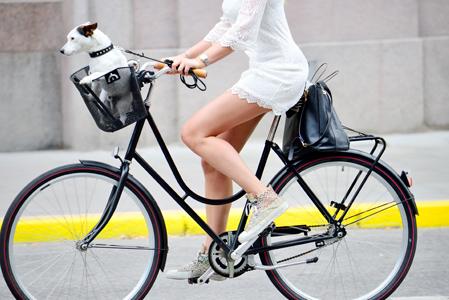 kolesarski-nasveti-image-mestna-kolesa2-hervsi_SI.jpg